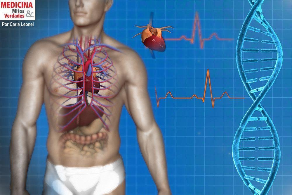 As novidades em cardiologia