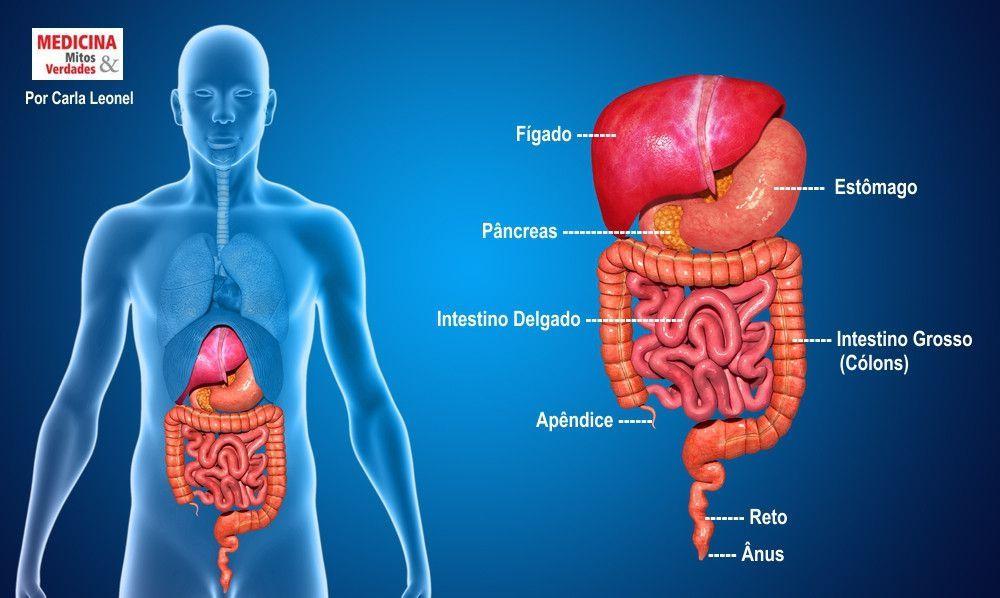 Diagnósticos e tratamentos em gastro