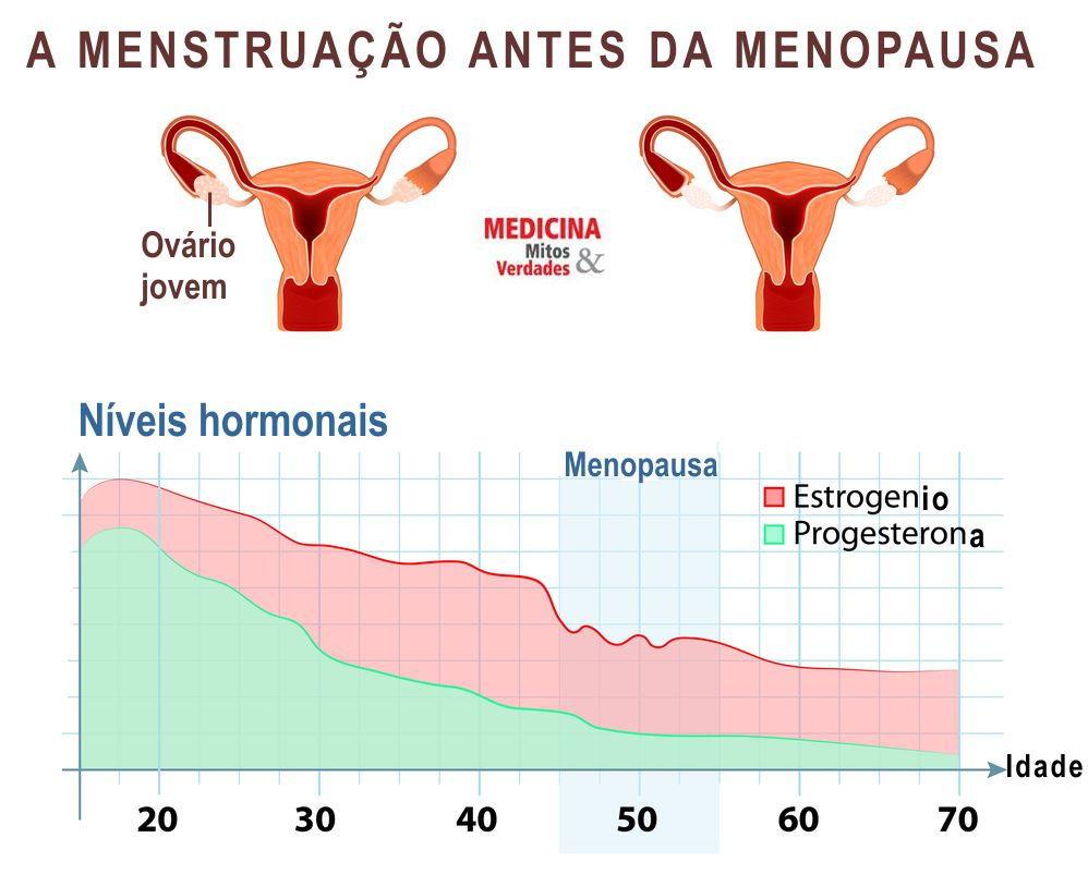 A menstruação antes da menopausa