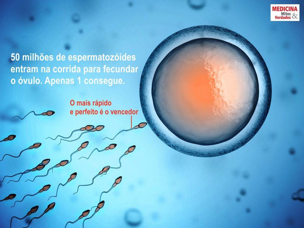 A quantidade de esperma e a fertilidade