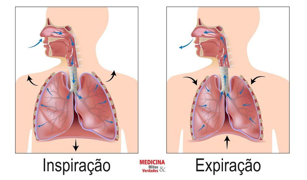 Tipos e frequências da respiração