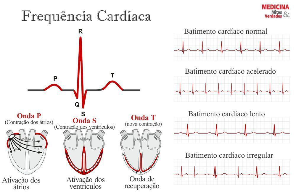 Batimento cardiaco normal e quanto