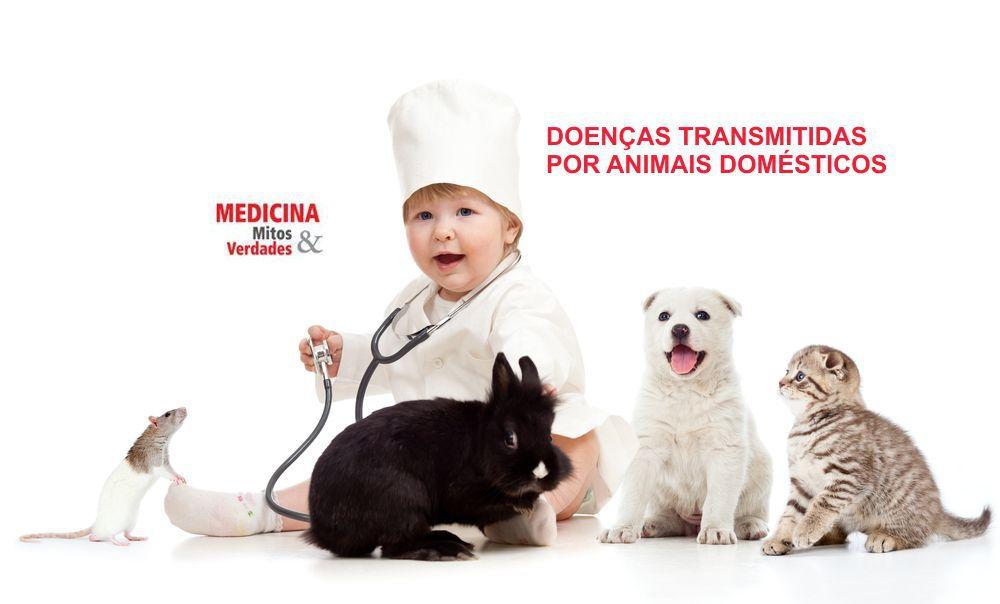 Doenças transmitidas por animais domésticos